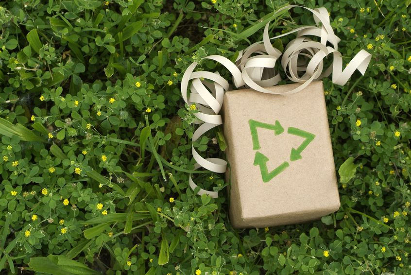 Custom Grocery Bags Environmentally Friendly Ways to Save Money: Go Green