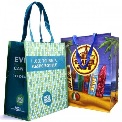 Recycled Large Glossy Bags - RG4