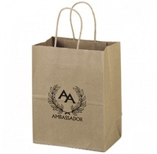 Noble Recycled Paper Bag - RP7