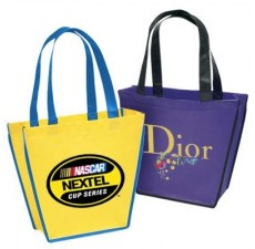 Reusable Designer Bag - NW14