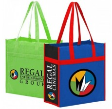 Reusable Small Grocery Bag - NW2